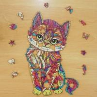 Katze Kylin